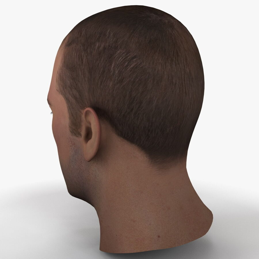 Male Head Collection royalty-free 3d model - Preview no. 9