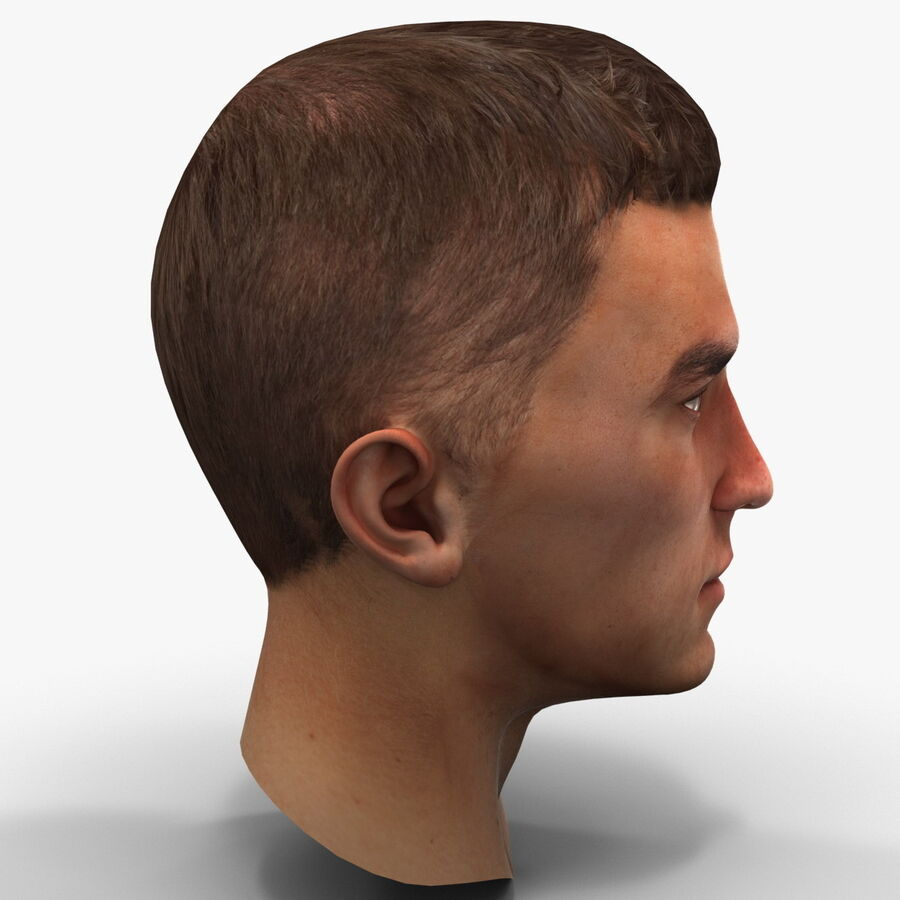 Male Head Collection royalty-free 3d model - Preview no. 79