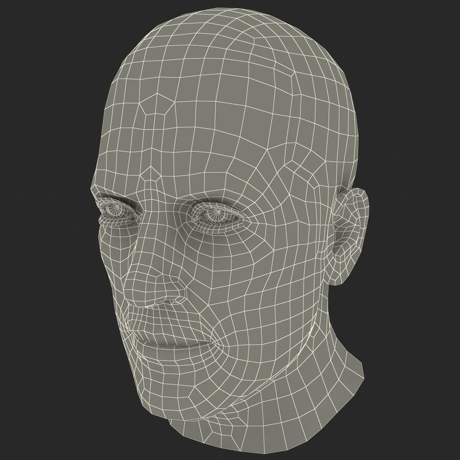 Male Head Collection royalty-free 3d model - Preview no. 22