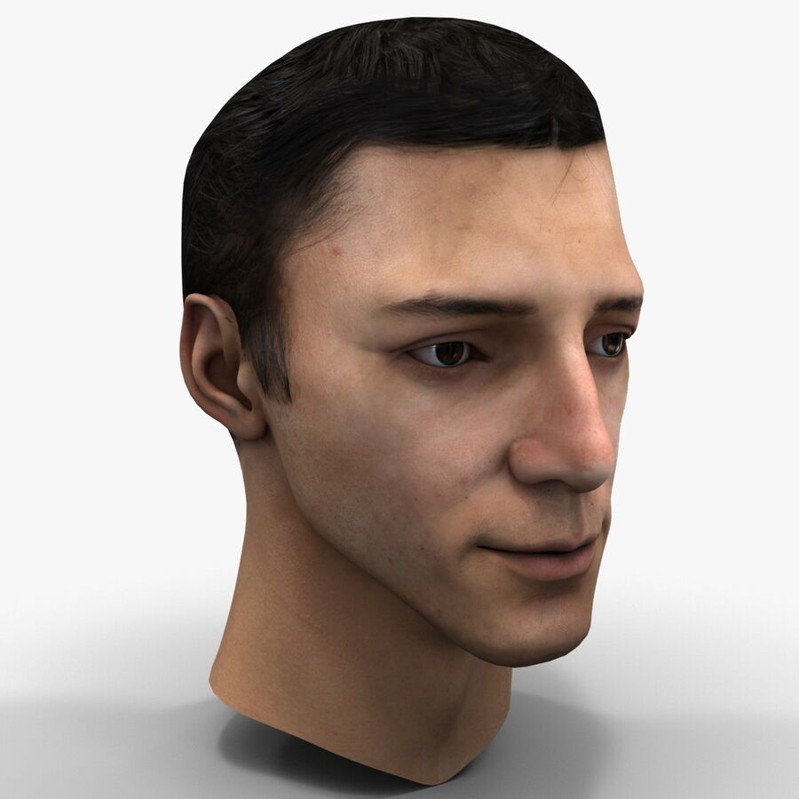 Male Head Collection royalty-free 3d model - Preview no. 36