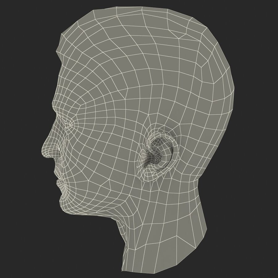 Male Head Collection royalty-free 3d model - Preview no. 92
