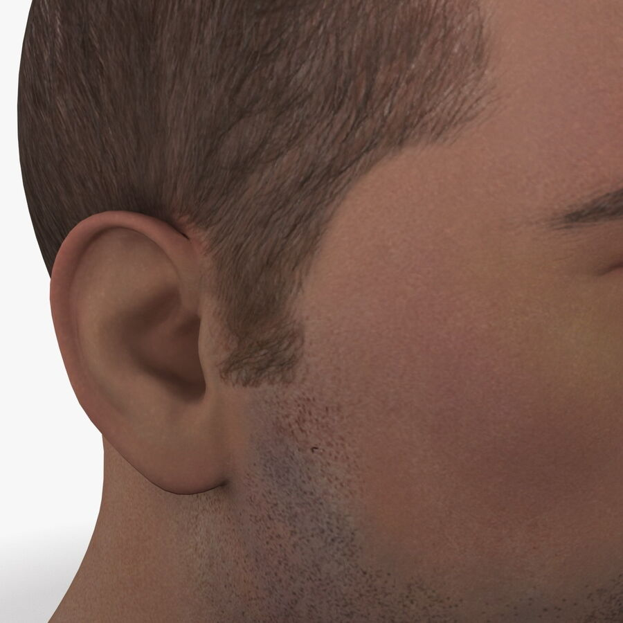 Male Head Collection royalty-free 3d model - Preview no. 14