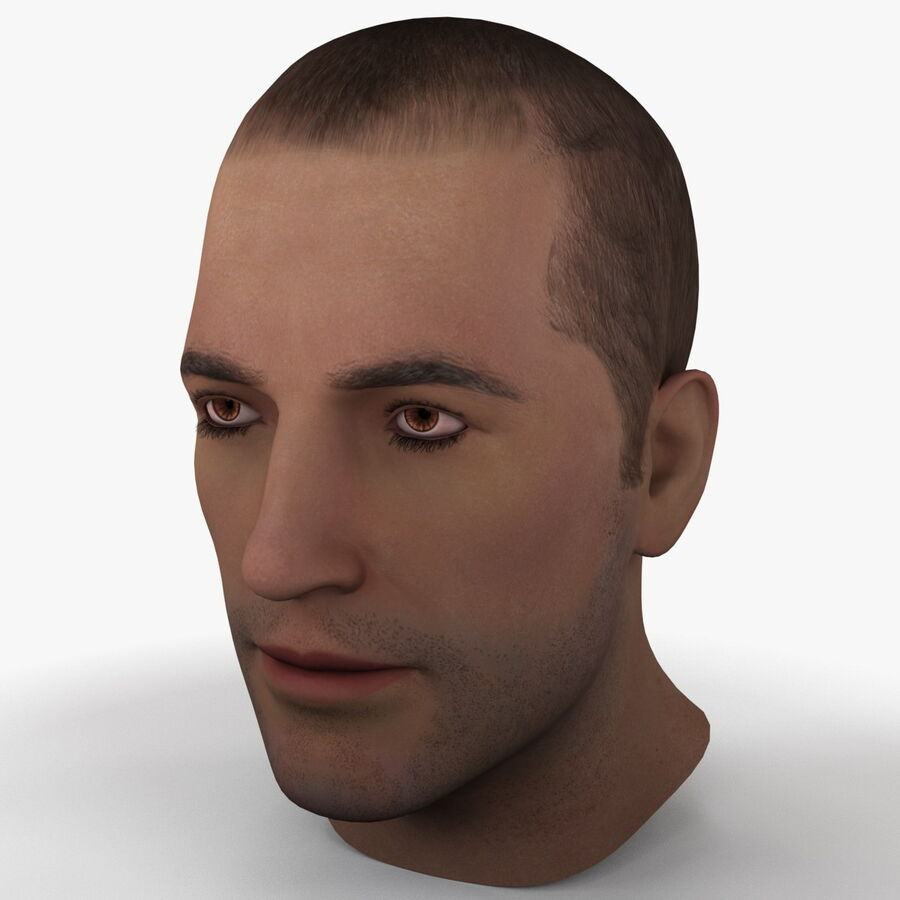 Male Head Collection royalty-free 3d model - Preview no. 11