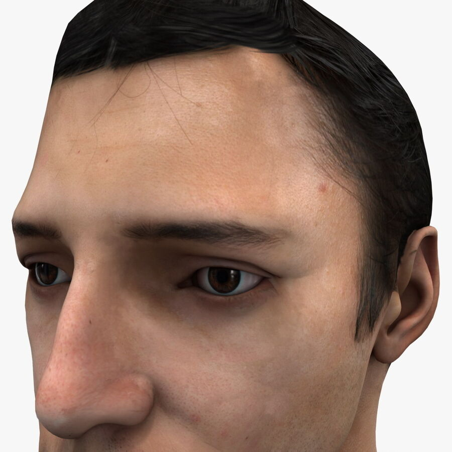 Male Head Collection royalty-free 3d model - Preview no. 42