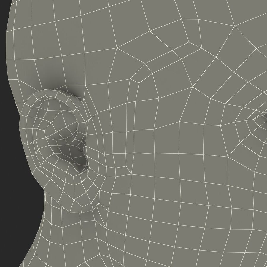 Male Head Collection royalty-free 3d model - Preview no. 26