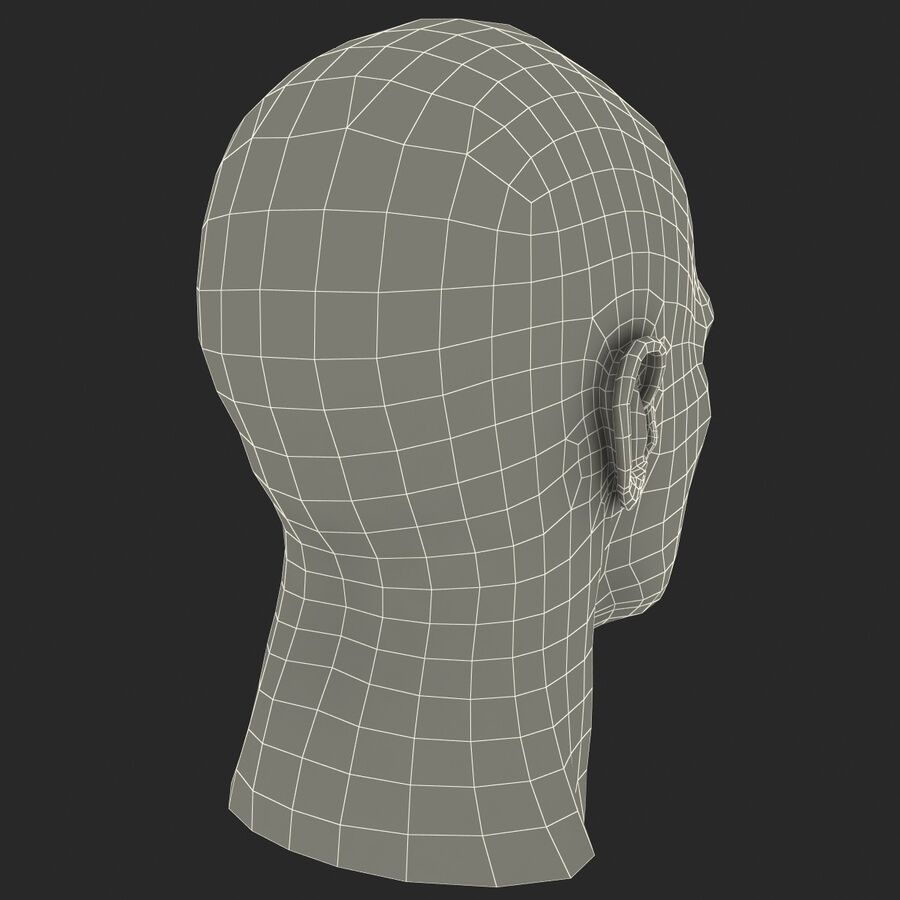 Male Head Collection royalty-free 3d model - Preview no. 69