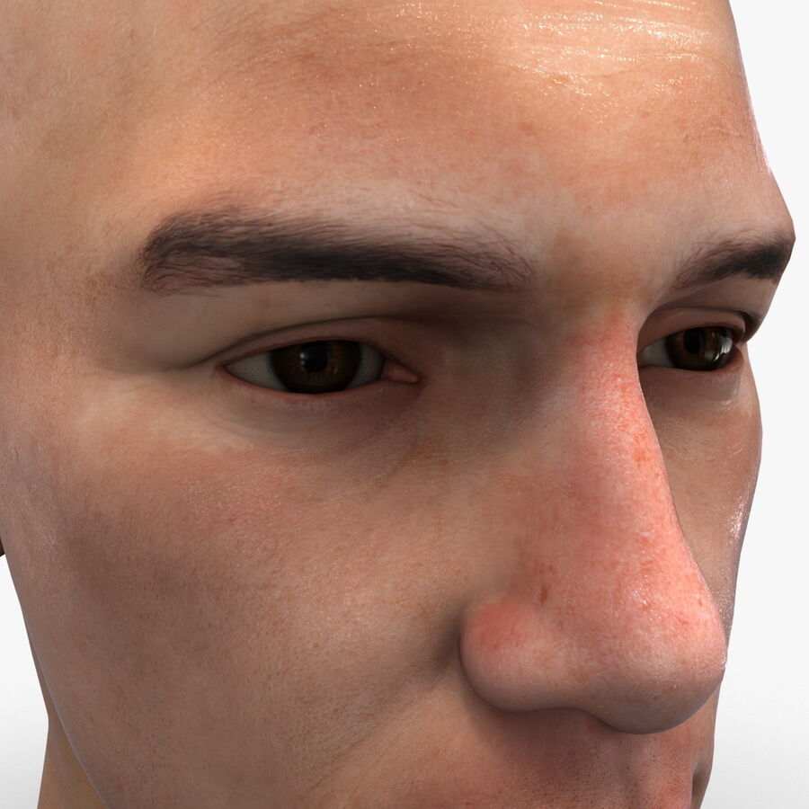 Male Head Collection royalty-free 3d model - Preview no. 63