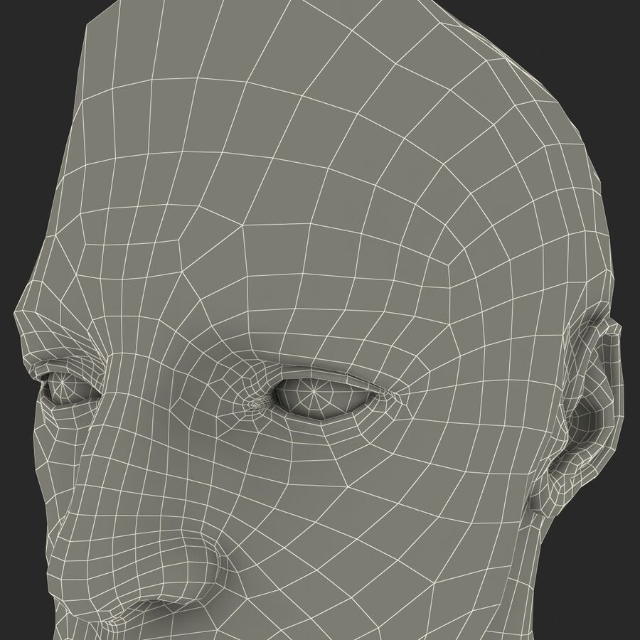Male Head Collection royalty-free 3d model - Preview no. 52