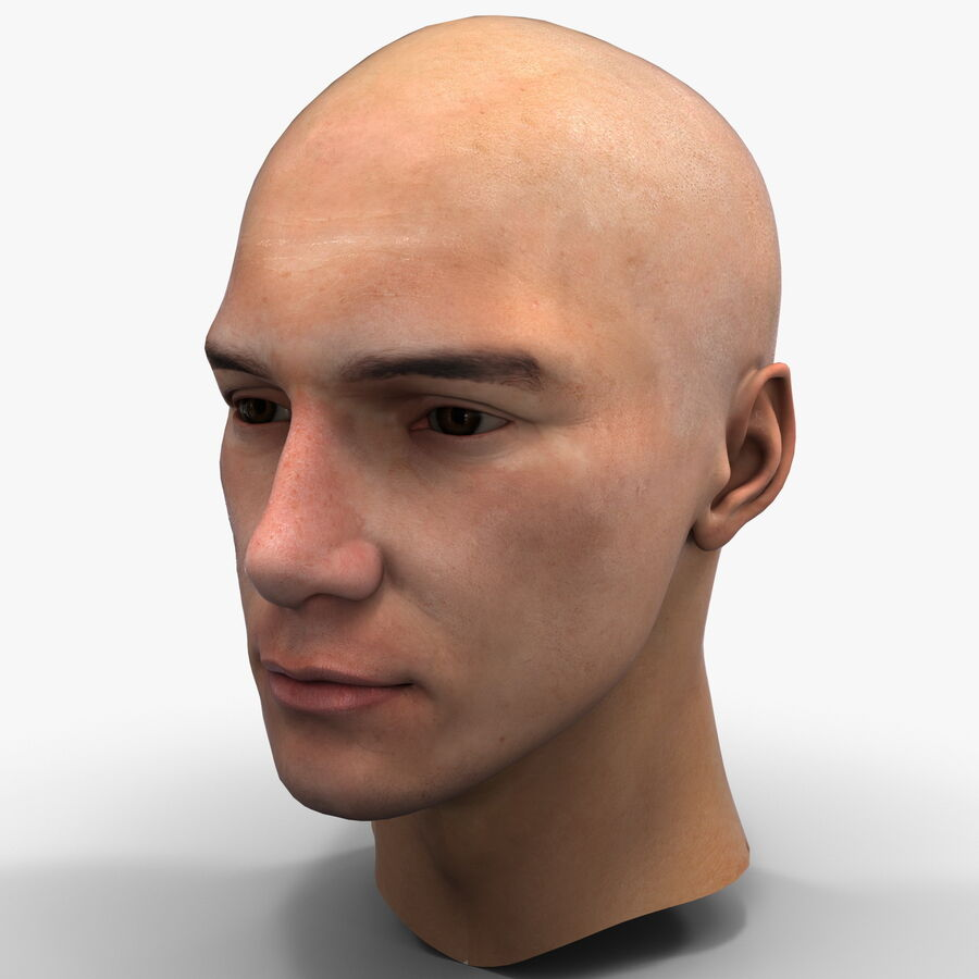 Male Head Collection royalty-free 3d model - Preview no. 56