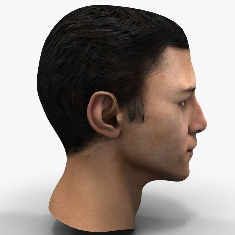 Male Head Collection royalty-free 3d model - Preview no. 37