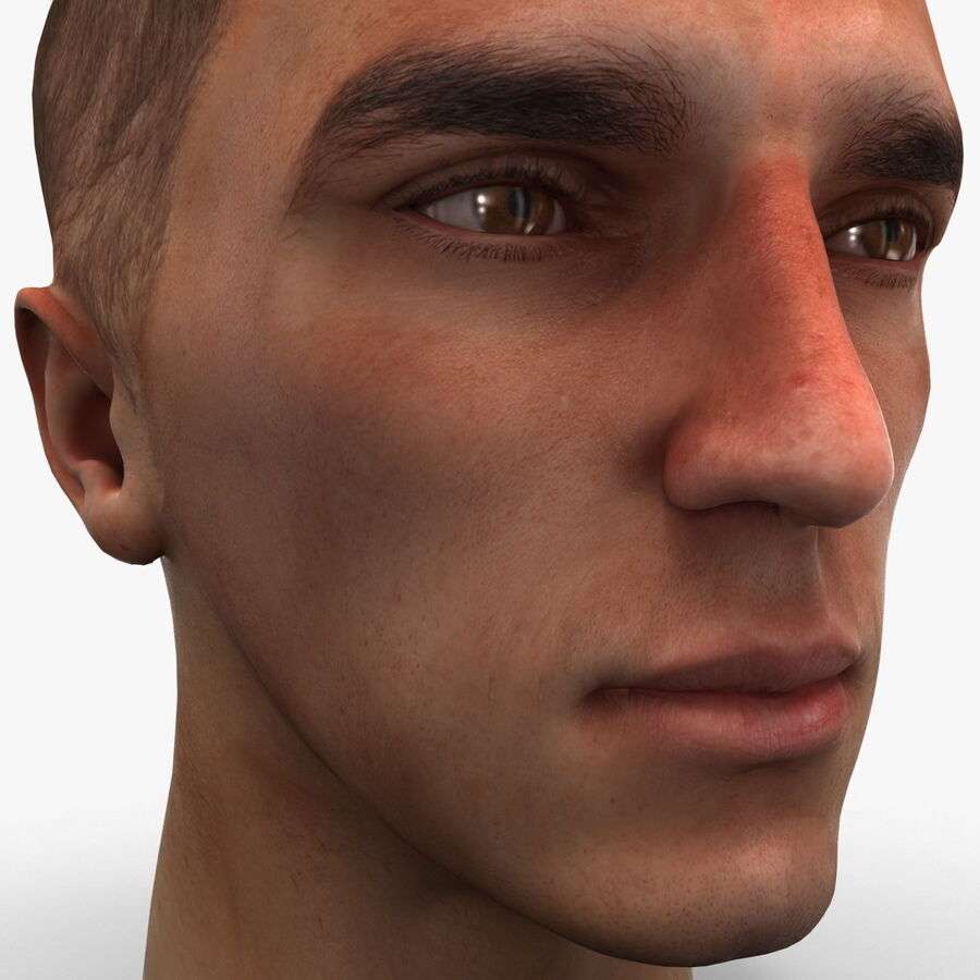 Male Head Collection royalty-free 3d model - Preview no. 85