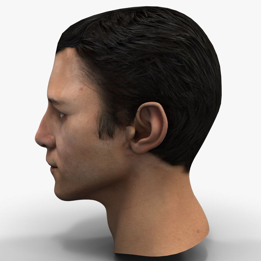 Male Head Collection royalty-free 3d model - Preview no. 40