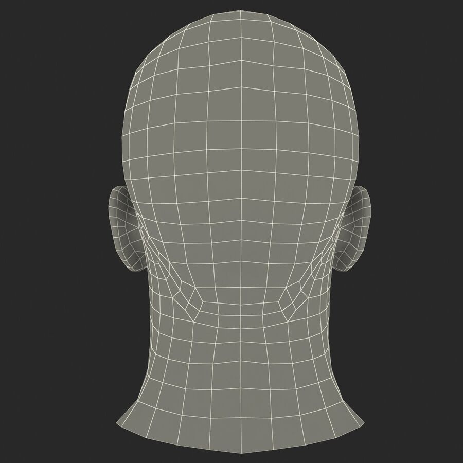 Male Head Collection royalty-free 3d model - Preview no. 19
