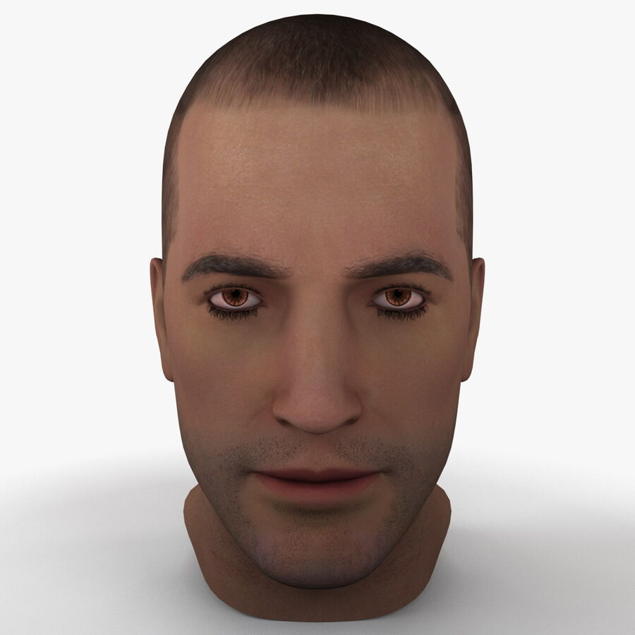 Male Head Collection royalty-free 3d model - Preview no. 4