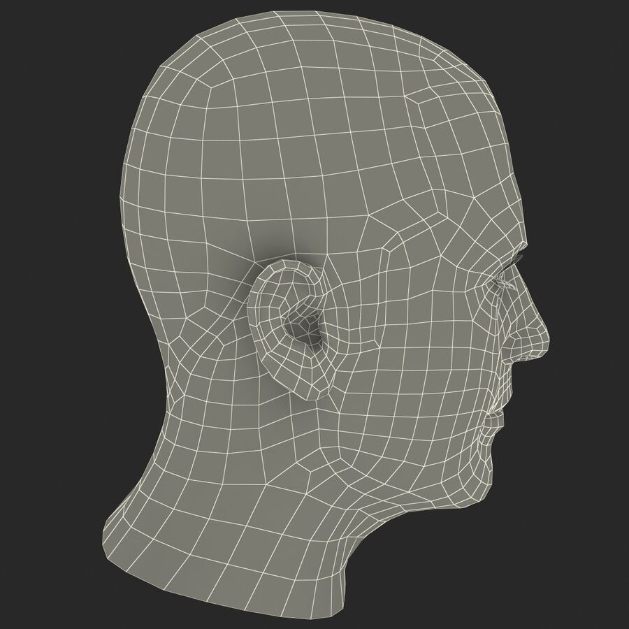 Male Head Collection royalty-free 3d model - Preview no. 17