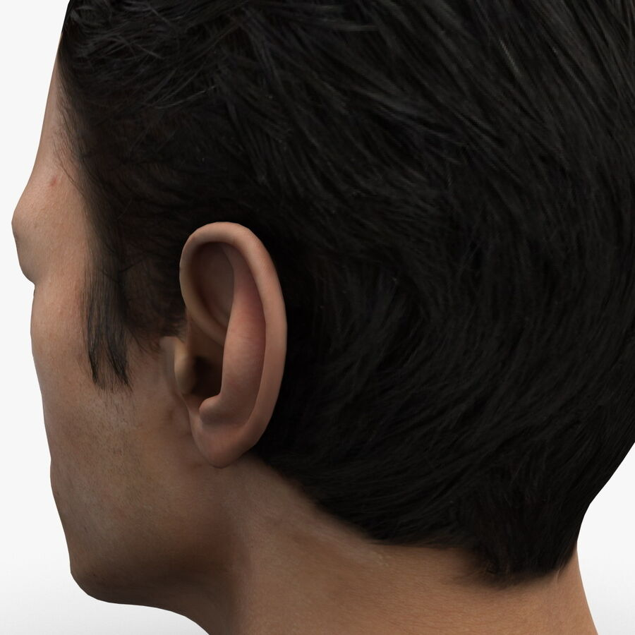 Male Head Collection royalty-free 3d model - Preview no. 44