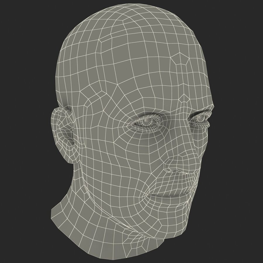 Male Head Collection royalty-free 3d model - Preview no. 16