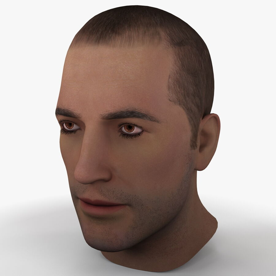 Male Head Collection royalty-free 3d model - Preview no. 3