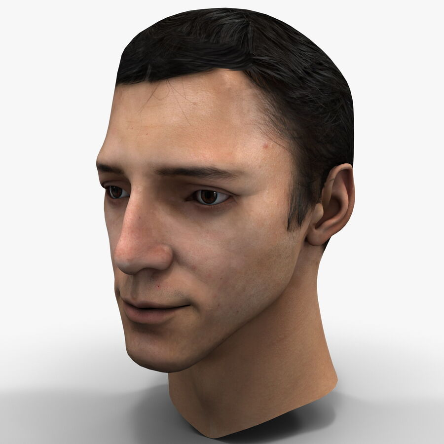 Male Head Collection royalty-free 3d model - Preview no. 31