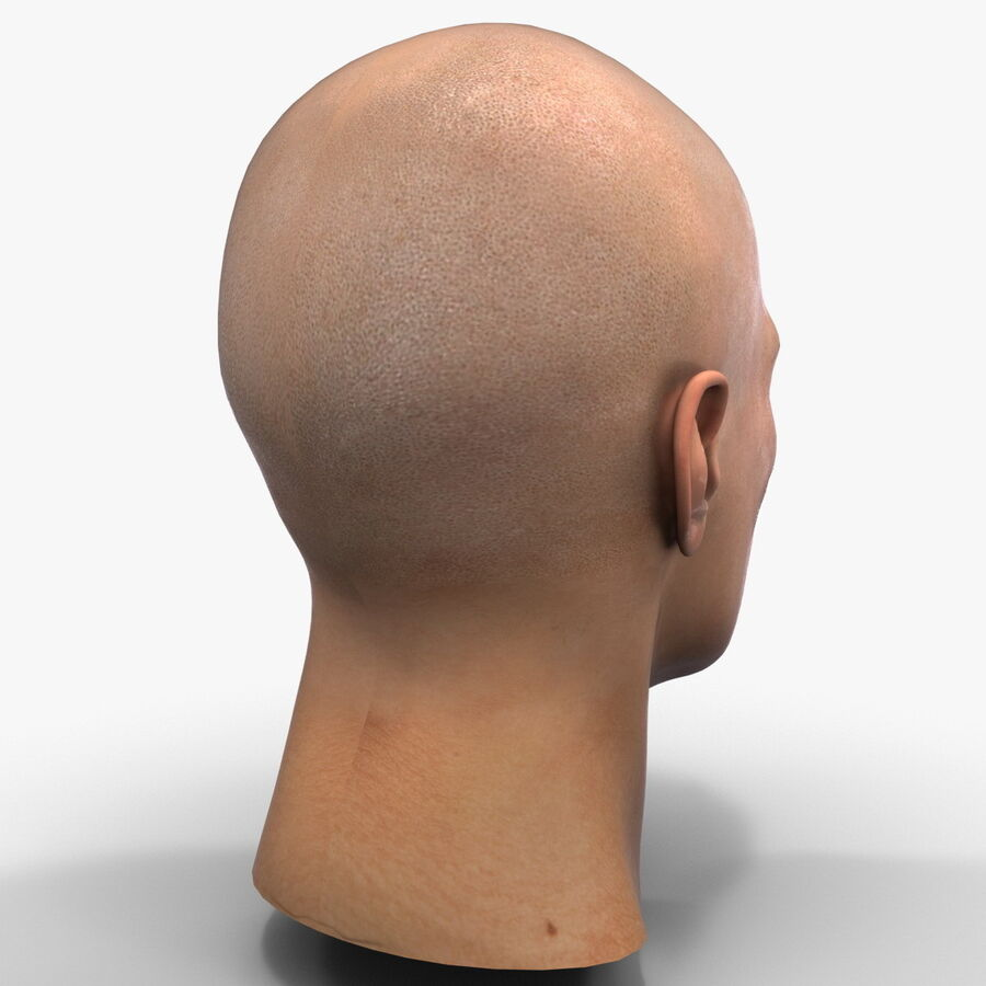 Male Head Collection royalty-free 3d model - Preview no. 60