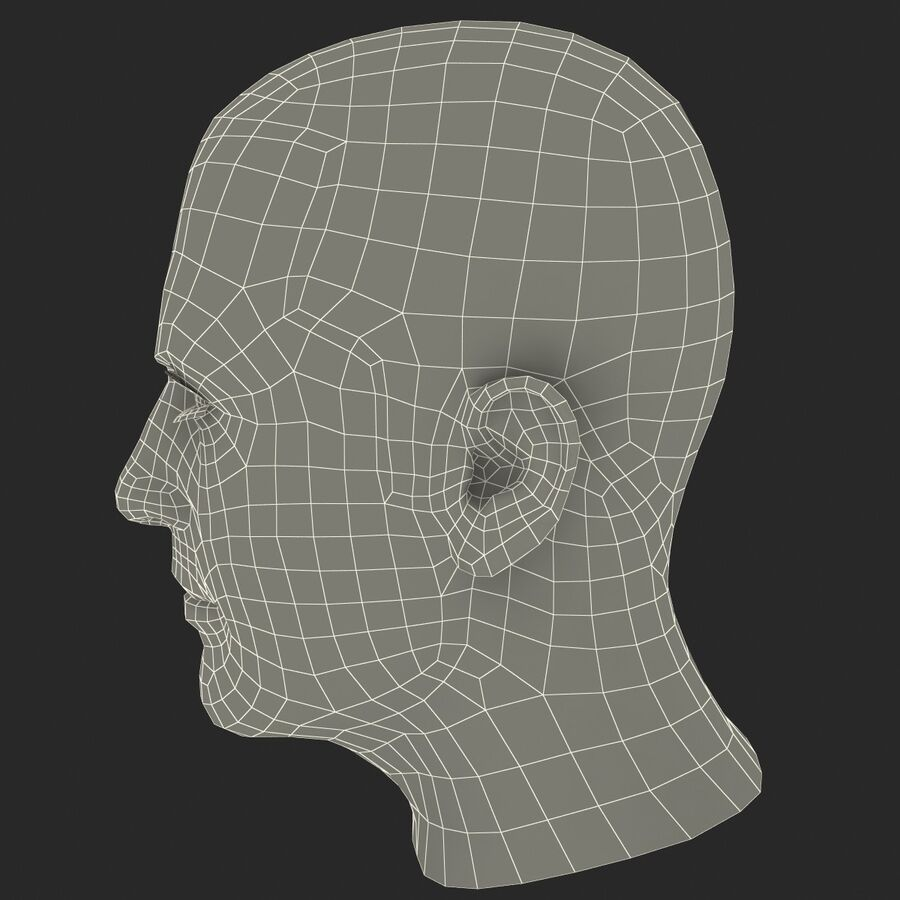 Male Head Collection royalty-free 3d model - Preview no. 21