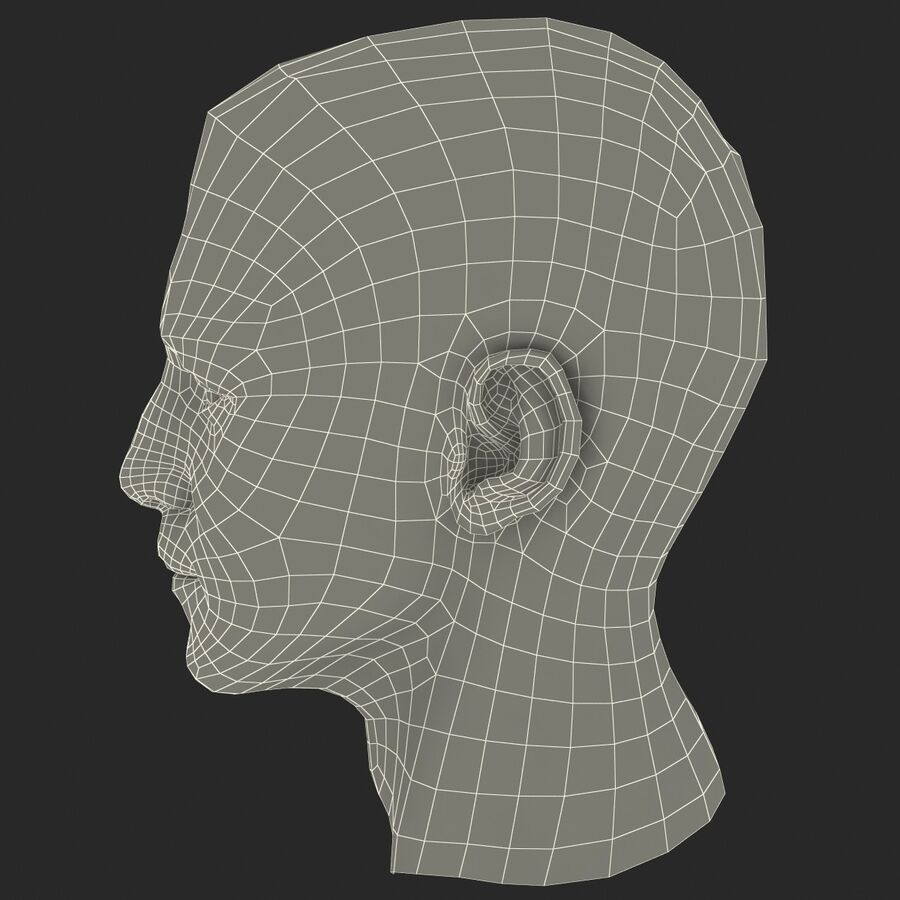 Male Head Collection royalty-free 3d model - Preview no. 50