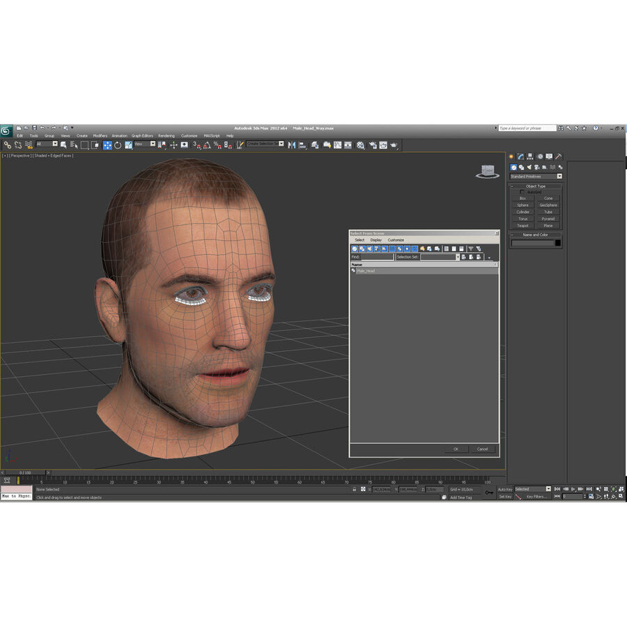 Male Head Collection royalty-free 3d model - Preview no. 29