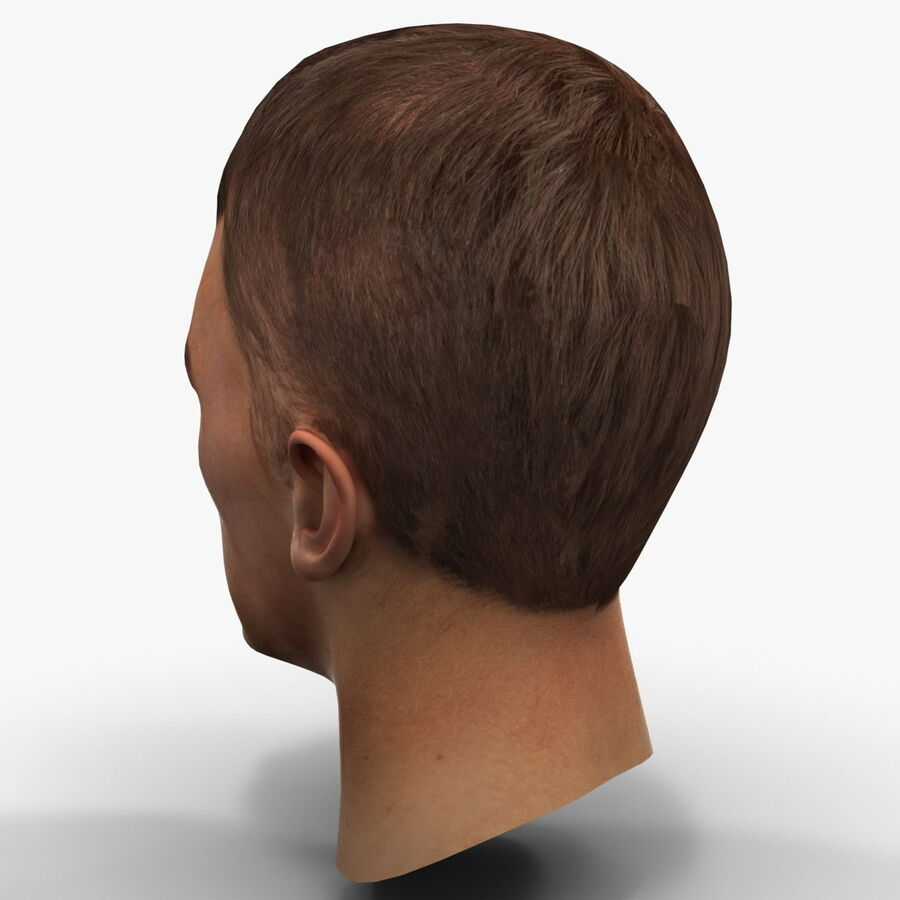 Male Head Collection royalty-free 3d model - Preview no. 81