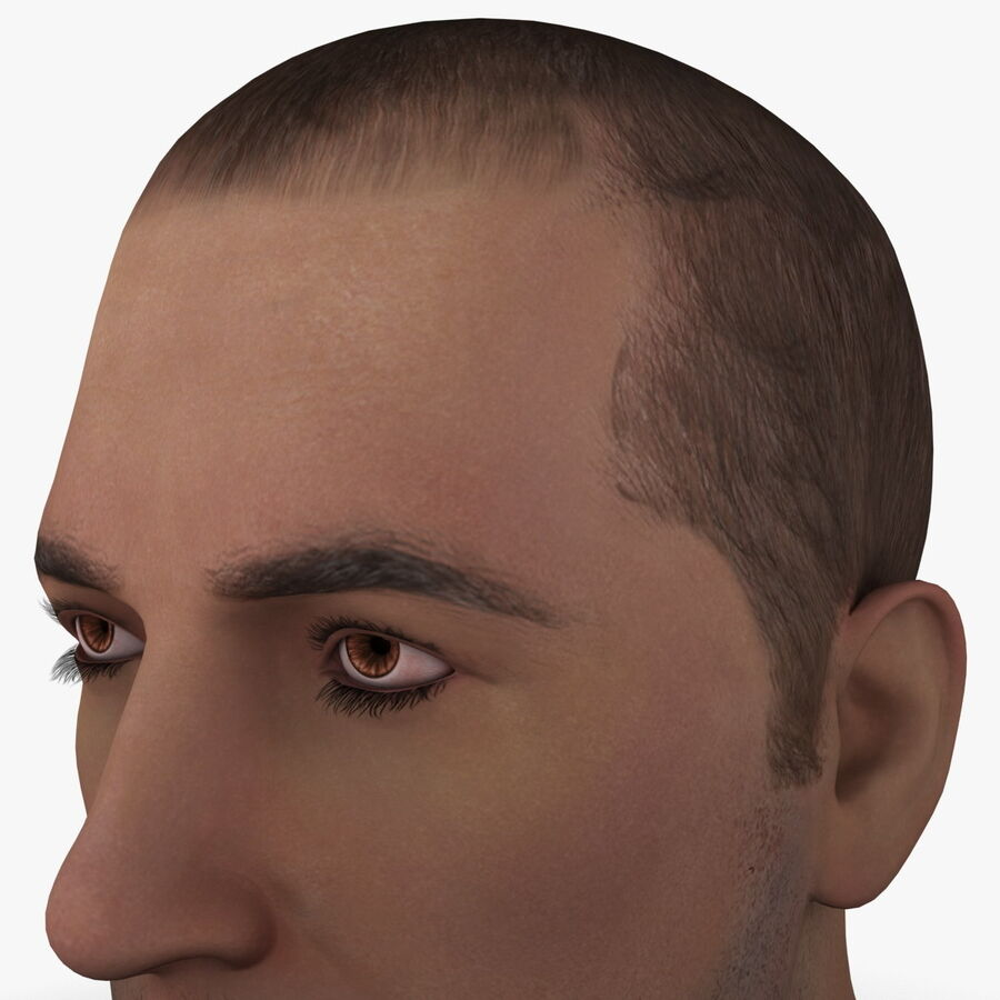 Male Head Collection royalty-free 3d model - Preview no. 12