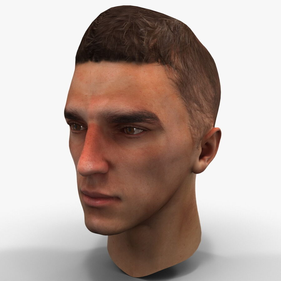 Male Head Collection royalty-free 3d model - Preview no. 83