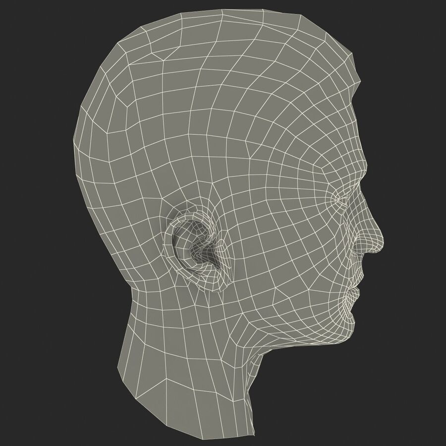Male Head Collection royalty-free 3d model - Preview no. 89