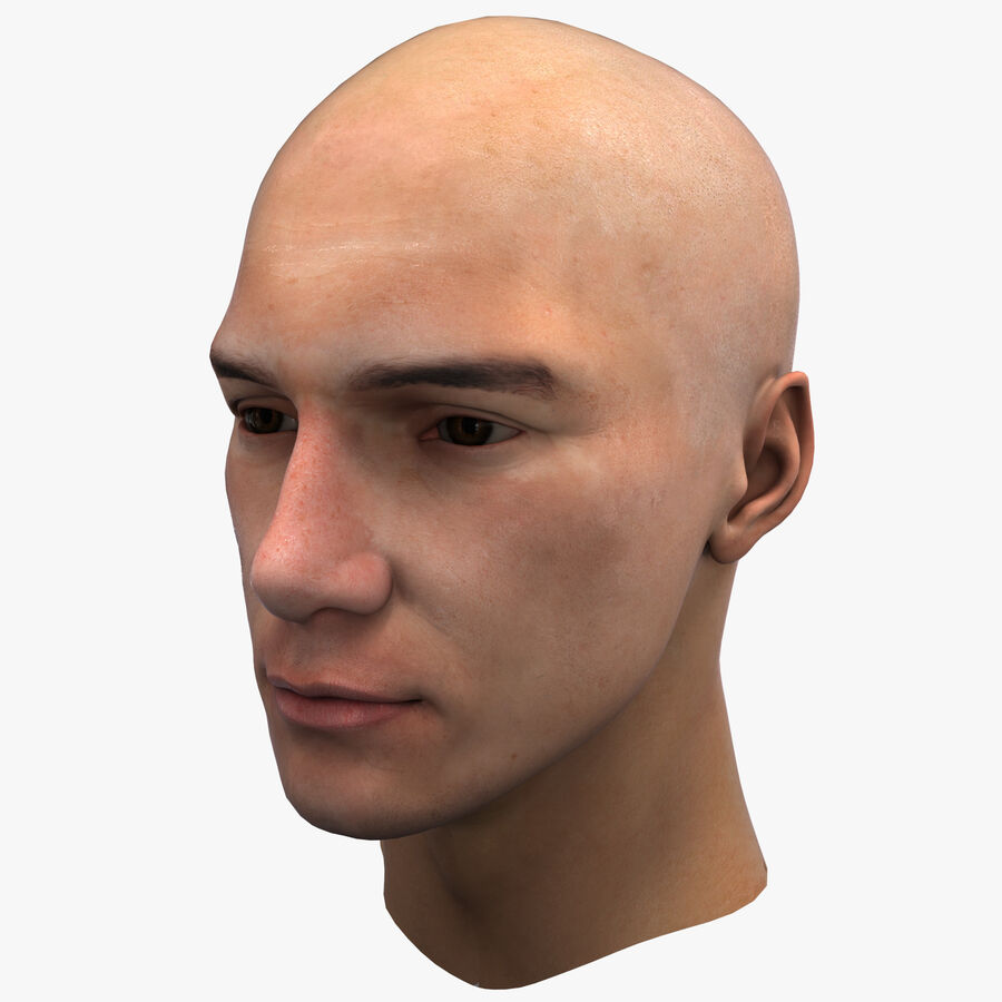 Male Head Collection royalty-free 3d model - Preview no. 55