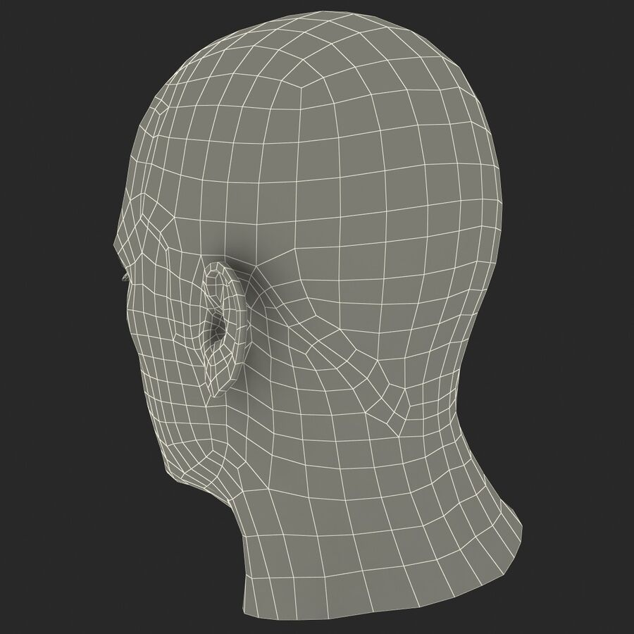 Male Head Collection royalty-free 3d model - Preview no. 20