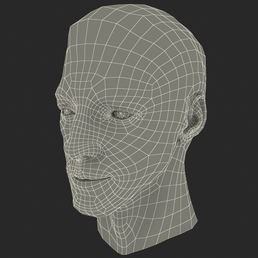 Male Head Collection royalty-free 3d model - Preview no. 51