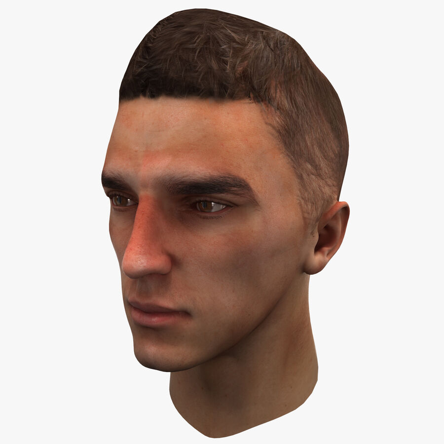 Male Head Collection royalty-free 3d model - Preview no. 75