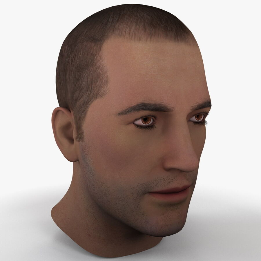 Male Head Collection royalty-free 3d model - Preview no. 5