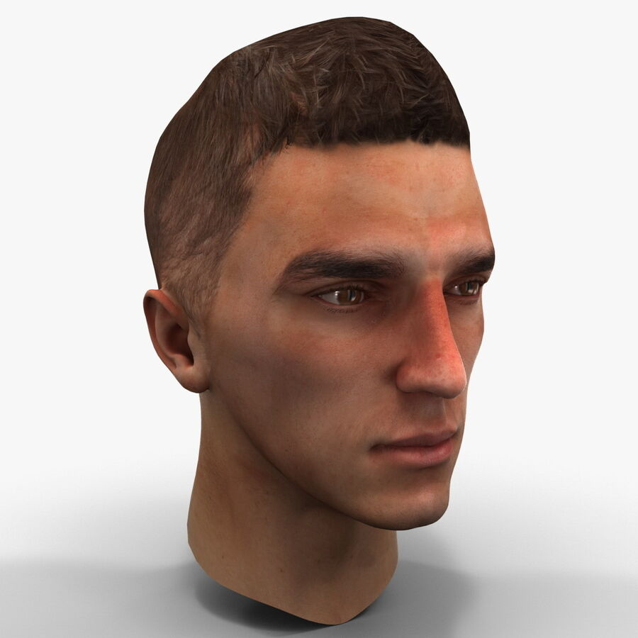 Male Head Collection royalty-free 3d model - Preview no. 78