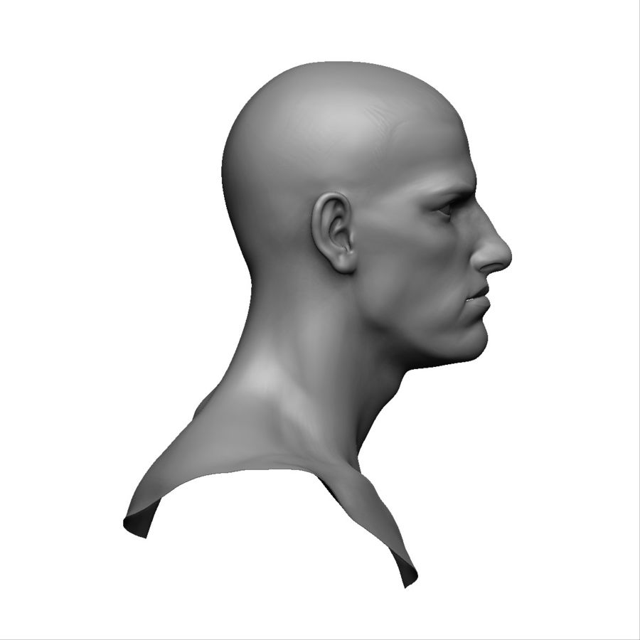 Strong man head royalty-free 3d model - Preview no. 8