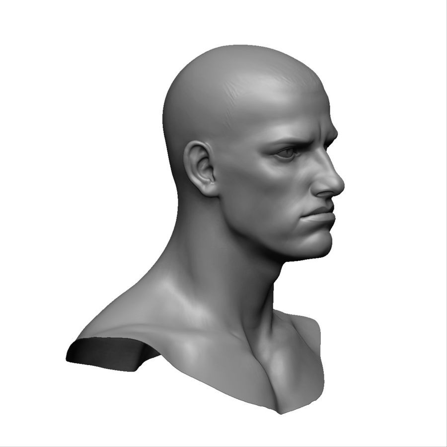 Strong man head royalty-free 3d model - Preview no. 7