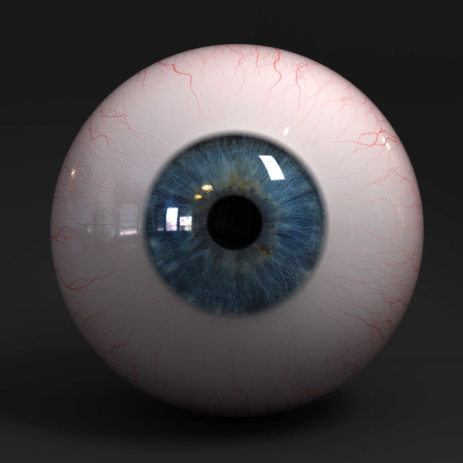 Realistic Human Eye royalty-free 3d model - Preview no. 3