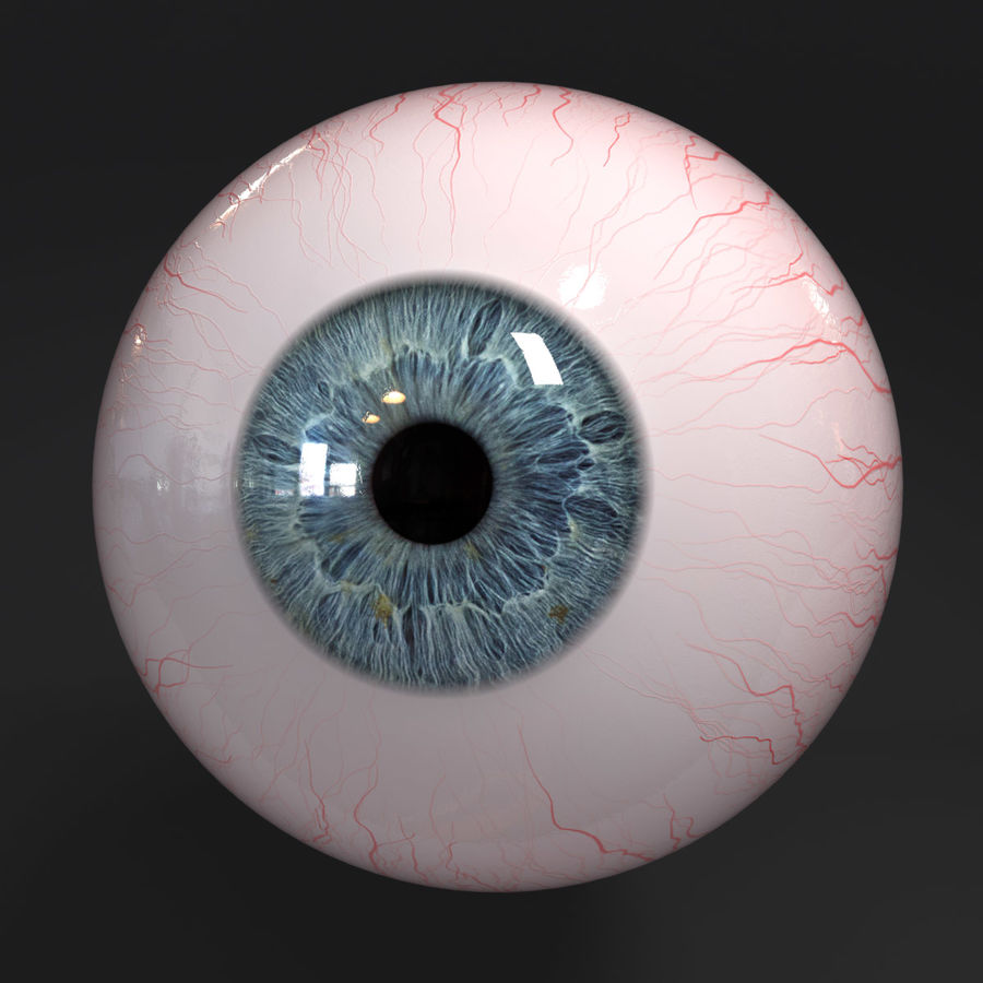 Realistic Human Eye royalty-free 3d model - Preview no. 8