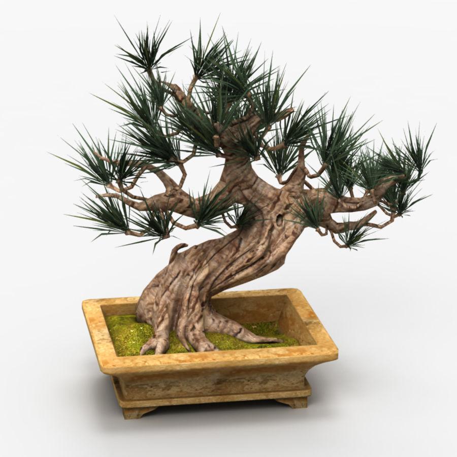 Bonsai Tree royalty-free 3d model - Preview no. 1