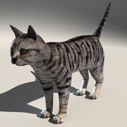 Gato malhado 3d model