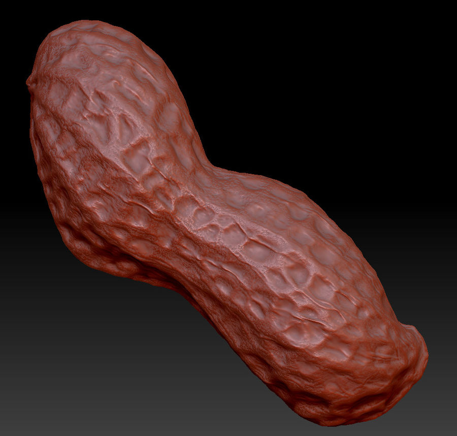 peanut royalty-free 3d model - Preview no. 3
