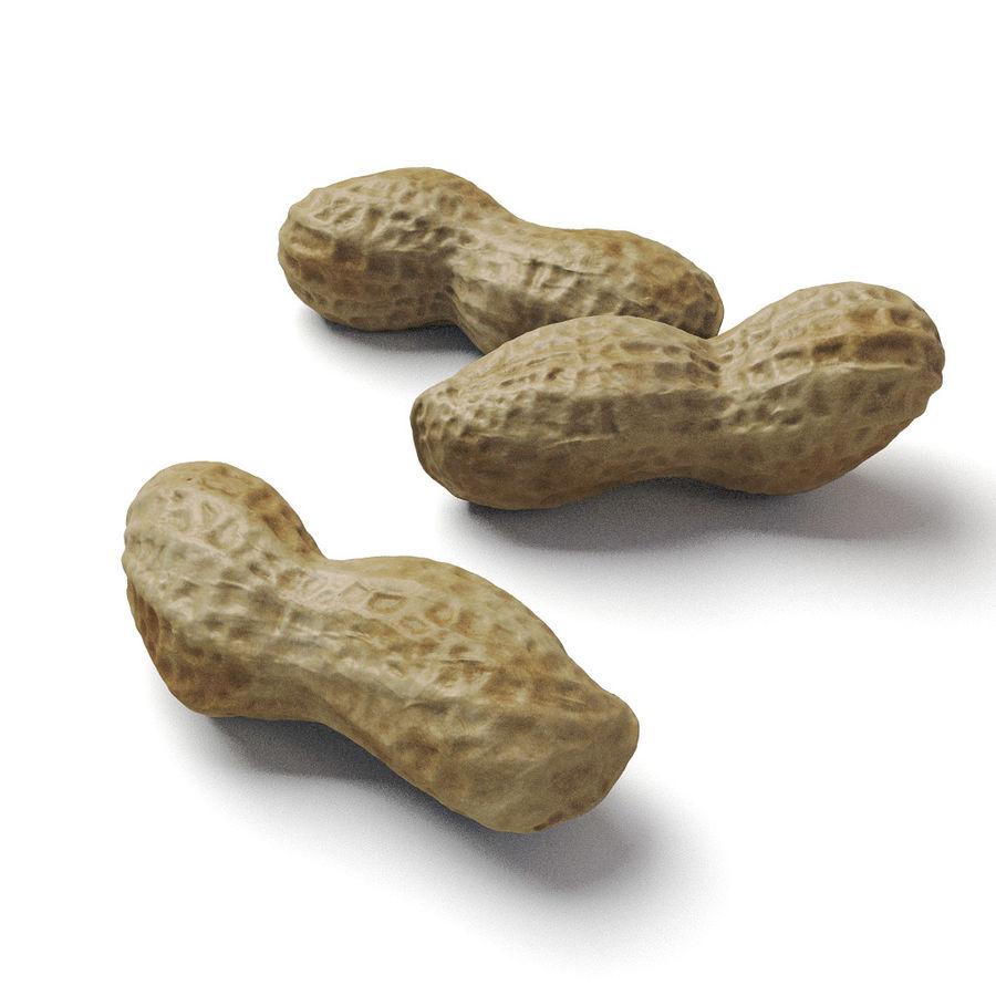 peanut royalty-free 3d model - Preview no. 1