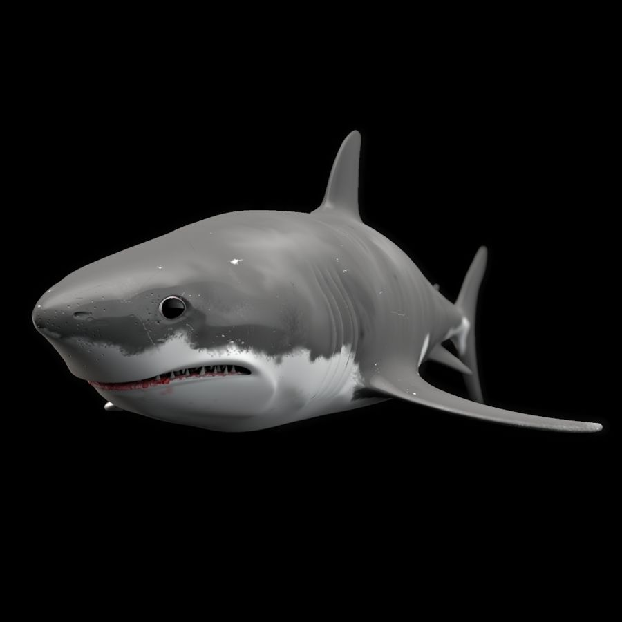 Shark royalty-free 3d model - Preview no. 1