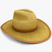 Słomiany kapelusz 3d model