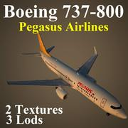 B738 PGT 3d model