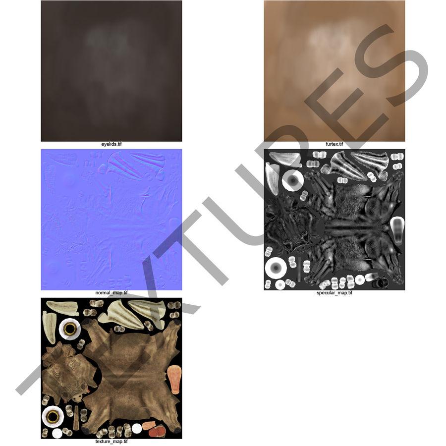 Phacochère commun royalty-free 3d model - Preview no. 2