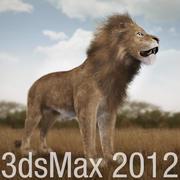Lejon med päls 3d model